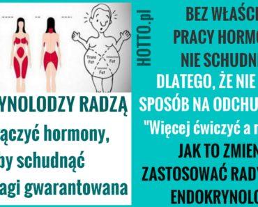 hotto.pl-JAK-WLACZYC-HORMONY-I-SCHUDNAC-RADZA-ENDOKRYNOLODZY-SPRAWDZ TO